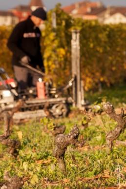 N° 0857-2105_Arrachage de la veilles vignes